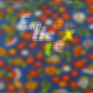 [TNR-131]Loveles - Exotica tex